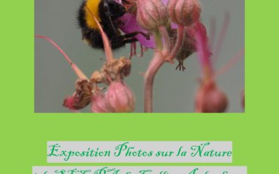 Exposition photos sur la nature